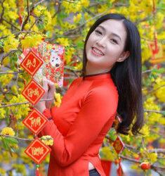 Nghe Nhac Xuan