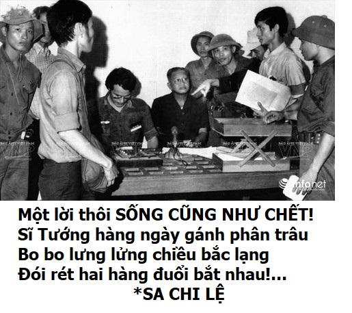 Dvm Lu Xu Ngan Nam Dvm Copy (2)