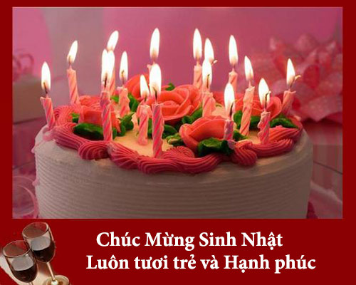 Loi Chuc Sinh Nhat Vui 3