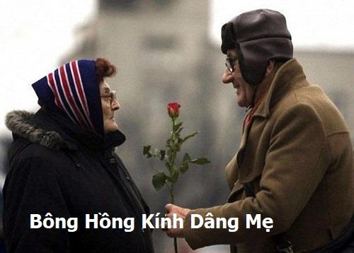 Bong Hong Tang Me1