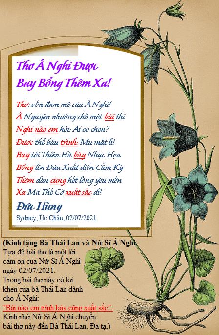 Duc Hung