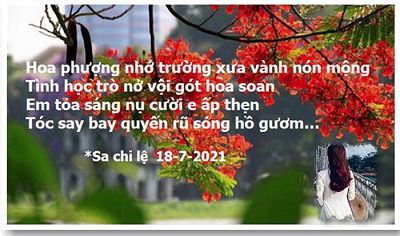 Sachile Mua Phuong