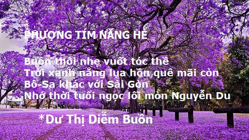 Phuong Tim He