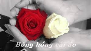 Bong Hong Copy