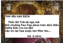 Thu Sau Dai Dich1 22
